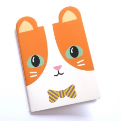 Notes kotek pomarańczowy